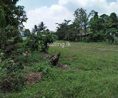 Land for sale @ Kalutara