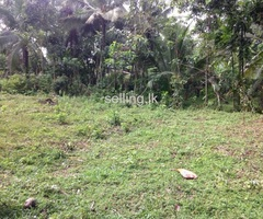 Land for sale in hanwella-urgent