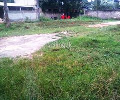 Galle makuluwa land for sale