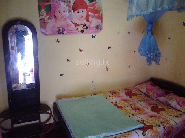 Home Stay in nuwara eliya