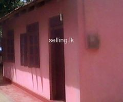 House sell in Pallebedda