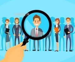sales executive job