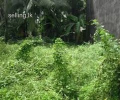 Land for sale in meegoda