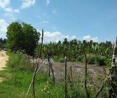 Land for sale in Ambalantota