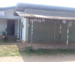 New House & A Shop For Sale