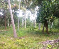 Land sale in tissamaharama