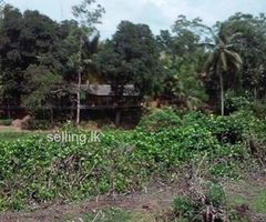Land for sale in Dharga town, Aluthgama.
