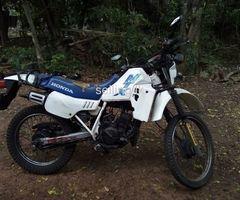 Honda MTS for sale