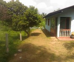 House for sale in Galwana