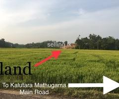 Kalutara Dodangoda Land 12.85 perchs