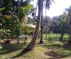 Land for Sale in Panadura Walana
