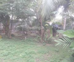 10 Parch Land for Sale in Kandana