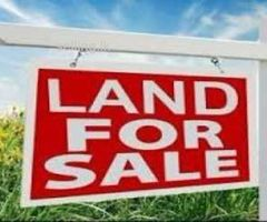 Own Your Dream Own... Exclusive Land for Business