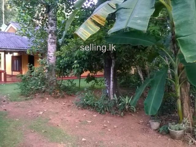 27 Perch House& Land sale in Magammana
