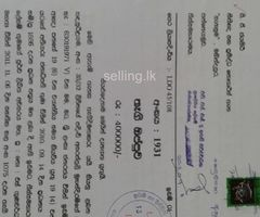 valuable land for sale in katharagama