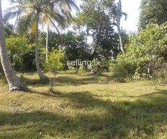 95 perch land for sale in gampaha