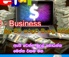 e business sinhala