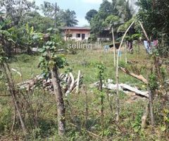 14.20 perches Land  for Sale in Thalagala