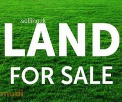 land and house for sale Galigamuwa Town