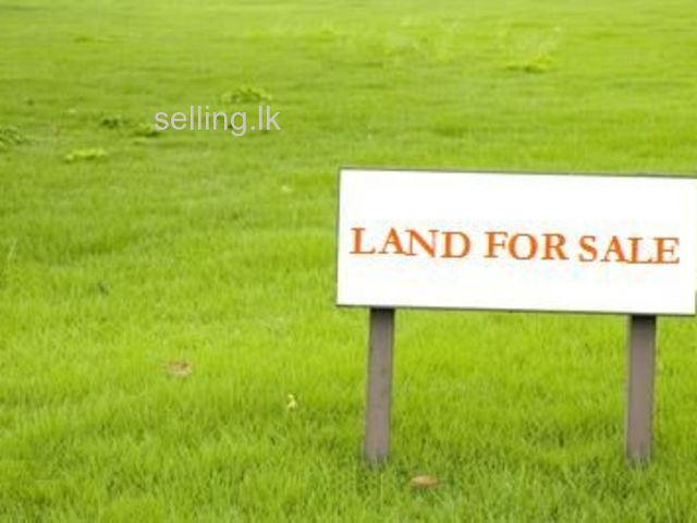 LAND  FOR SALE AT DEMATAGODA
