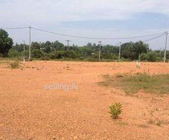 Land for sale From Dodangoda Highway Entrance road, 4 blocks