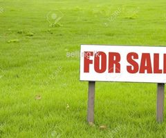 Land for sale in 100m to the ethulkotte main road