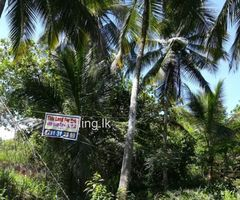 Land for sale in Bambaragaswewa Matale
