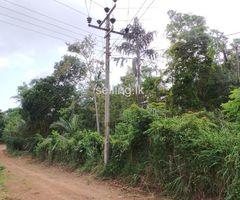 Land for sale- Thalpawila