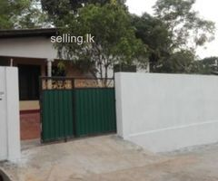 2 Bed Room House for Rent in Kiriwaththuduwa