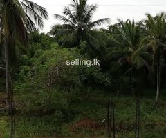 50 perches Land for sale in Middeniya