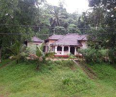 land -for sale in lngiriya