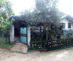 House for sale in Pallepola