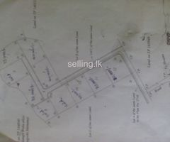Land For sale in Elpitiya
