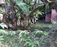 Galle Hapugala Land