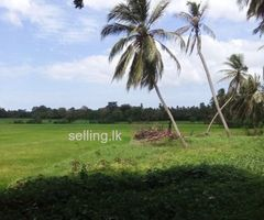 Land in Tissamaharama