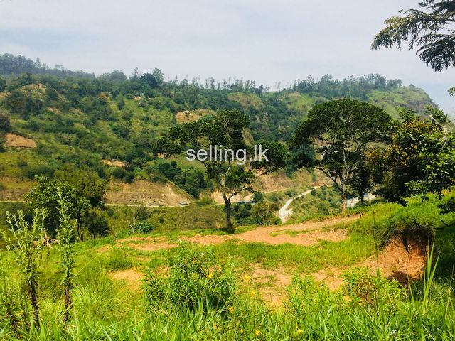 land in bandarawela