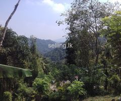 22p Land For Sale In Kandy Yatihalagala