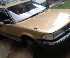Toyota Corolla DX Wagon for sale