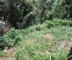 11p Land For Sale In Kandy Dawlagala