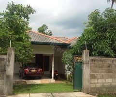 Kurunegala-Bakmeegolla area Village house for sale.