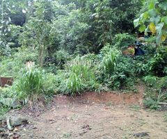 Land for sale in Peradeniya