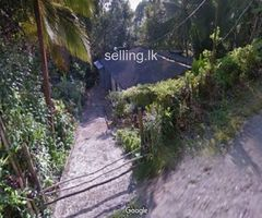 Valuable House and Land sale