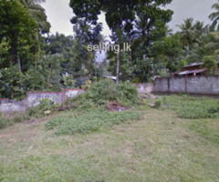 Land for immediate sale in Piliyandala