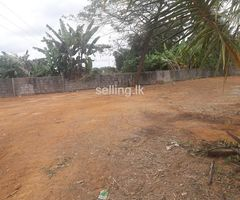 Land for  Quick  Sale in pannipitiya
