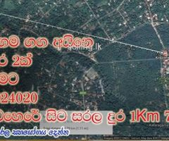 Kataragama land bordered by the river and Road. කතරගම මැණික් ගගට සහ පාරට මායිම්ව අගනා ඉඩමක්.
