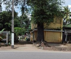 Land  for sale in kelaniya