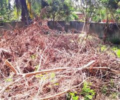 Galle Hapugala Land for sale