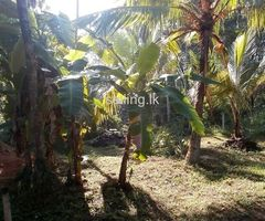 12.69 perches land  for sale in Pitipana Junction Homagama