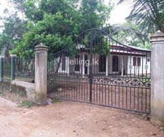 House for Rent at Radawana
