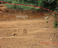 A Valuable Land for sale In Pelmadulla.